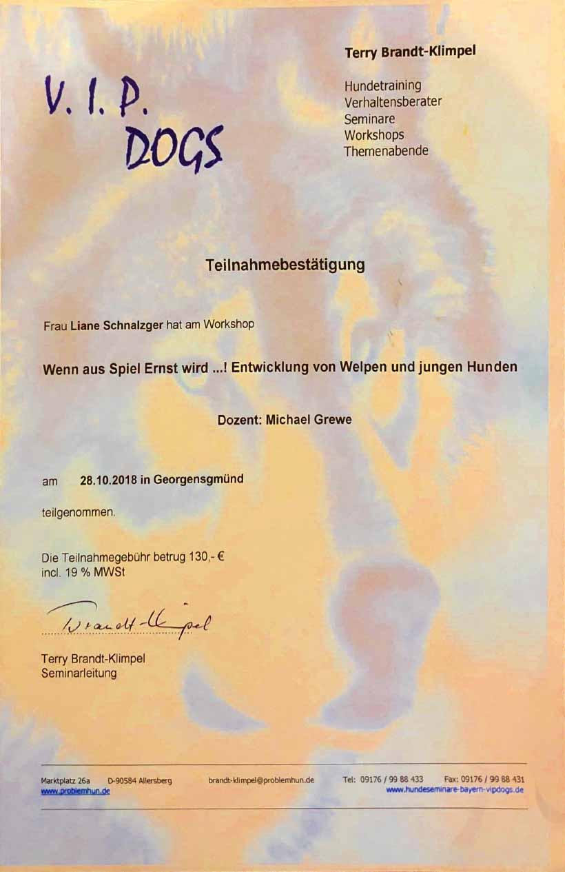 Referenzen_VIPDogs_Teilnahmebestätigung.jpg